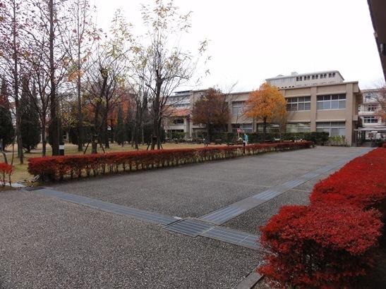 クリストファー大学