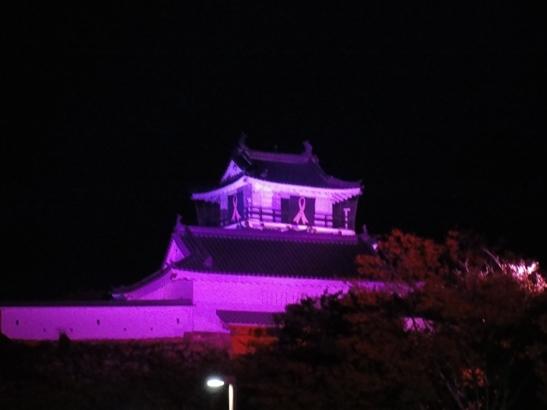 ライトアップ2015.jpg